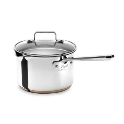 Emerilware Stainless Steel 3-Quart Saucepan with Lid