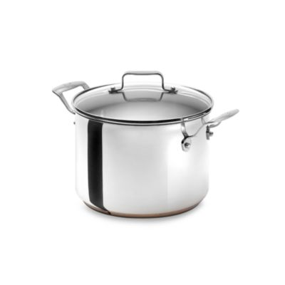 Emerilware Stainless Steel 8-Quart Stockpot with Lid