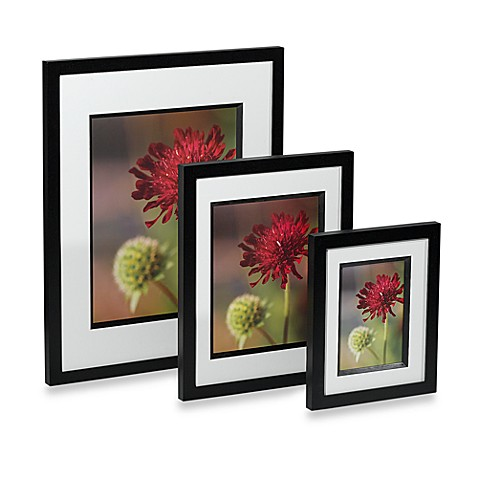 Via Venta 16-Inch x 20-Inch Wood Photo Frames in Black