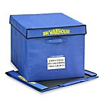 Bin Warehouse 32-Gallon 4-Pack Fold-a-Totes