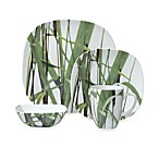 New Grass 16-Piece Dinnerware Set