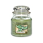 Yankee Candle® Housewarmer® Sage & Citrus Medium Classic Candle Jar