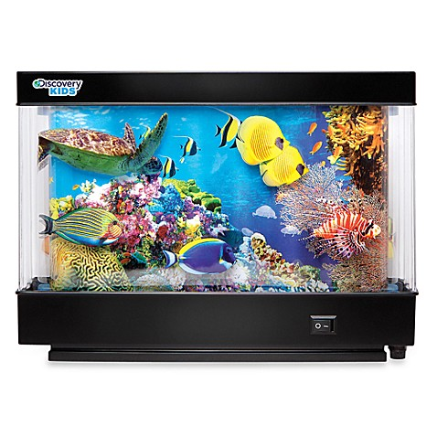 Discovery kids animated marine life lamp bed bath beyond for Closest fish store
