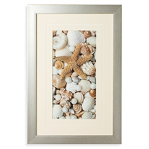 Shell Menagerie I Wall Art