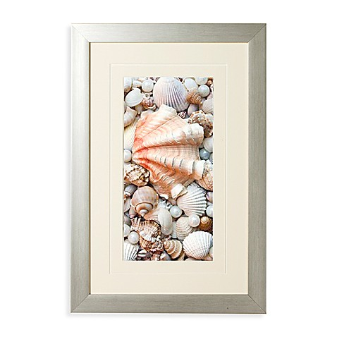 Shell Menagene II Wall Art