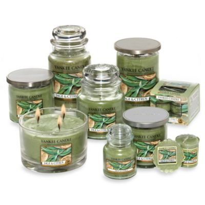 Yankee Candle® Housewarmer® Sage & Citrus Tea Light Accent Candles (Box of 12)