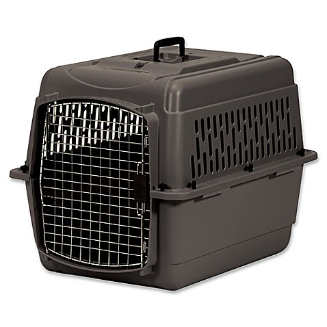Petmate® Medium Pet Porter 2 in Taupe