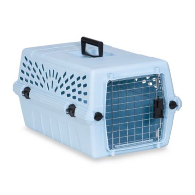 Petmate® Blue Pet Porter Jr. in Medium