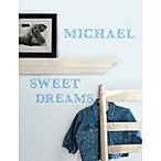 RoomMates Peel and Stick Wall Decals in Blue Expressions