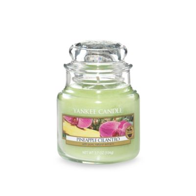 Yankee Candle® Housewarmer® Pineapple Cilantro Small Classic Jar Candle