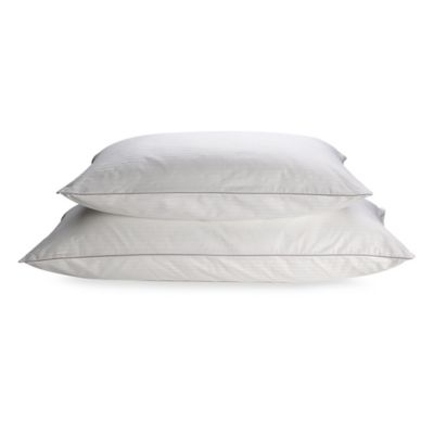 Isotonic Indulgence™ 100% Cotton Pillow