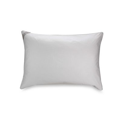 Isotonic® Indulgence™ Standard/Queen Back/Stomach Sleeper Pillow