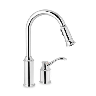 Moen® Aberdeen™ Pull Out One-Handle Kitchen Faucet in Chrome