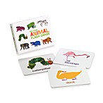 Eric Carle Animal Flash Cards