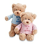 GUND It's a Boy/Girl Plush 12-Inch Teddy Bear