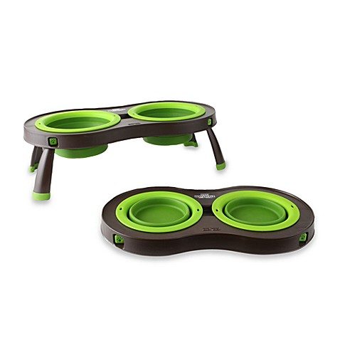 Dexas® Cesar Millan Dog Whisperer Large Collapsible Pet Feeder in Green