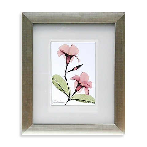 X Ray Pink Floral Wall Art Ii Bed Bath Beyond