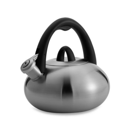 Stainless Steel 2-Quart Tea Kettle