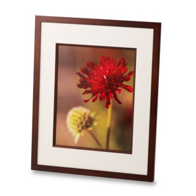Via Venta 16-Inch x 20-Inch Photo Frame in Walnut