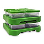green sprouts™ by i play® Polypropylene Freezer Cubes (Set of 8)