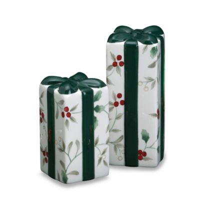 Pfaltzgraff® Winterberry Package Shaped Salt and Pepper Set