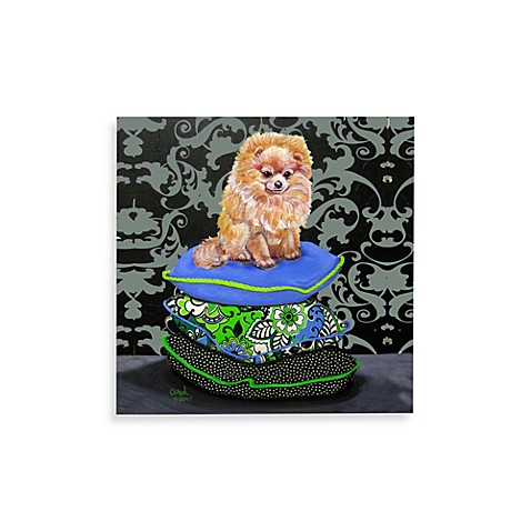 Pomeranian on Pillows Wall Art