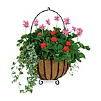 Gardman Cauldron Planter