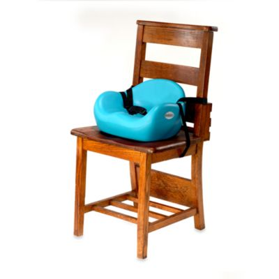 Keekaroo® Cafe Booster Seat in Aqua
