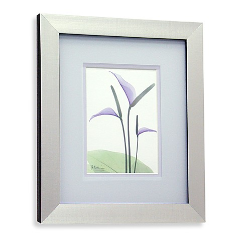 X Ray Floral Purple I Wall Art Bed Bath Beyond