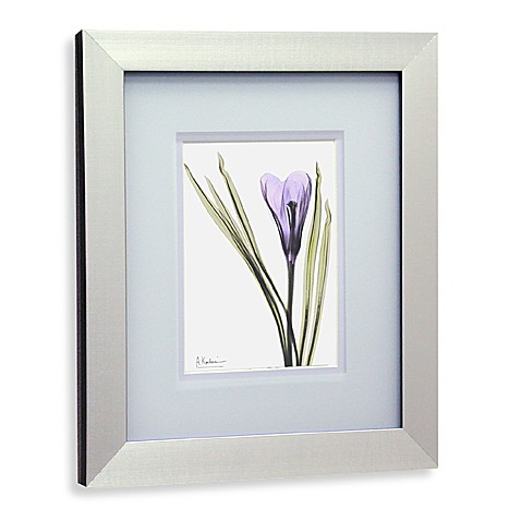 X Ray Floral Purple Iv Wall Art Bed Bath Beyond