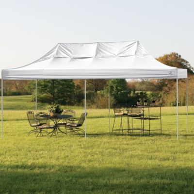 ShelterLogic® Pro Series 10-Foot x 20-Foot Canopy in Black