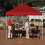 ShelterLogic® Pro Series 10-Foot x 10-Foot Straight Leg Canopy