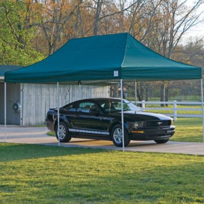 ShelterLogic® Pro Series 10-Foot x 20-Foot Canopy in Green