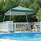 ShelterLogic® Sport Series 12' x 12' Slant Leg Canopy in Green