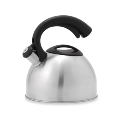 Remedy Daisy 3-Quart Tea Kettle in Stainless Steel