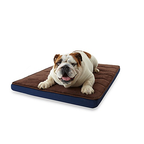Microdry® Ultimate Luxury Cushioned Bed in Navy/Dark Chocolate