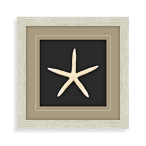 Starfish Shadowbox Wall Art - White