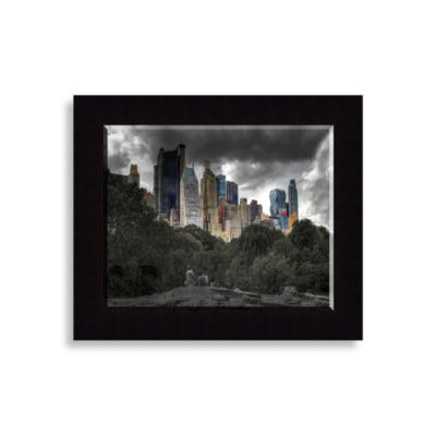 Central Park View Wall Art
