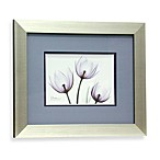 X-Ray Blackberry Floral I Wall Art