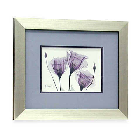 X Ray Blackberry Floral Iv Wall Art Bed Bath Beyond