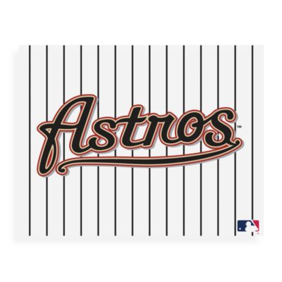 MLB Houston Astros Logo Canvas Wall Art