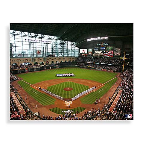 Buy Mlb Houston Astros Stadium Canvas Wall Art From Bed