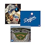MLB Los Angeles Dodgers Canvas Wall Art