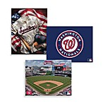 MLB Washington Nationals Canvas Wall Art