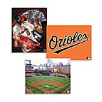 MLB Baltimore Orioles Canvas Wall Art