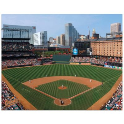 MLB Baltimore Orioles Stadium Canvas Wall Art