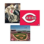 MLB Cincinnati Reds Canvas Wall Art