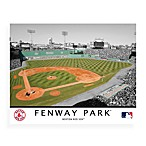 MLB Boston Red Sox Fenway Park Canvas Wall Art