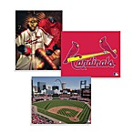 MLB St. Louis Cardinals Canvas Wall Art
