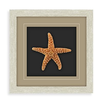Starfish Shadowbox Wall Art - Sugar